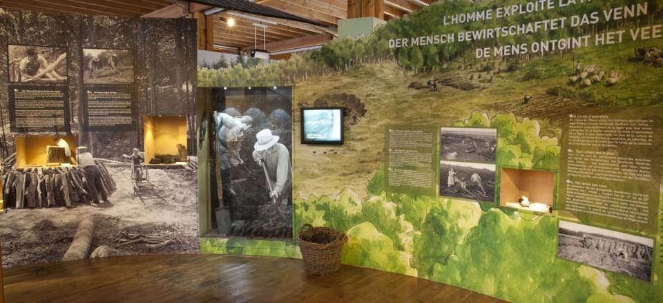 Scénographie de l'exposition à Botrange